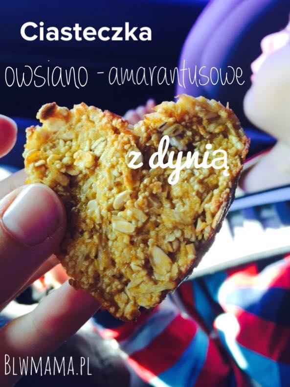 Jesienne ciasteczka owsiano-amarantusowe z dynią. Uzależniające. BLW.