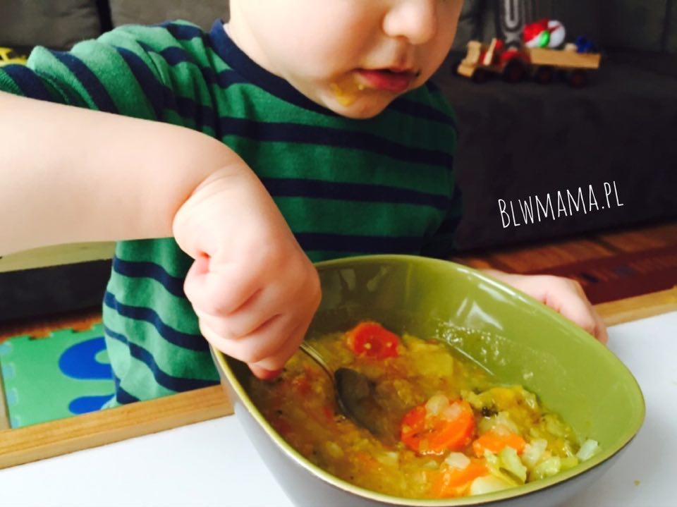 Zimowa zupa jaglano – warzywna. Bardzo łatwa. BLW
