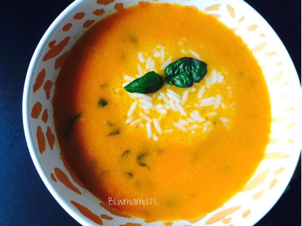 Fresh Tomato Basil Soup. BLW