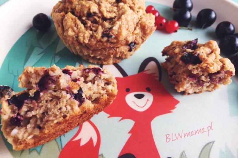 Muffinki kokosowo – orkiszowe z czarną porzeczką i słonecznikiem. BLW