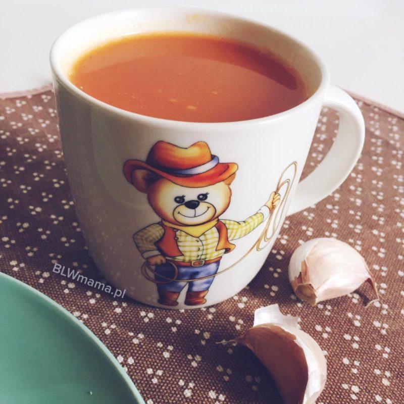 Zupa pomidorowo – dyniowa. Pycha! BLW