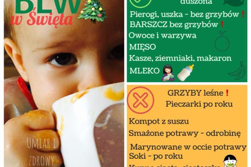 Świąteczny jadłospis dla maluszka. BLW