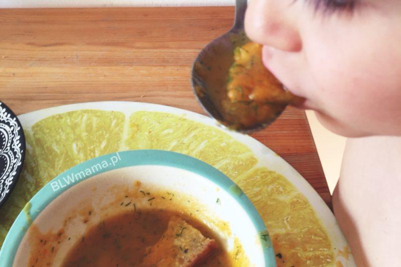 Łatwa zupa z młodej włoszczyzny. BLW